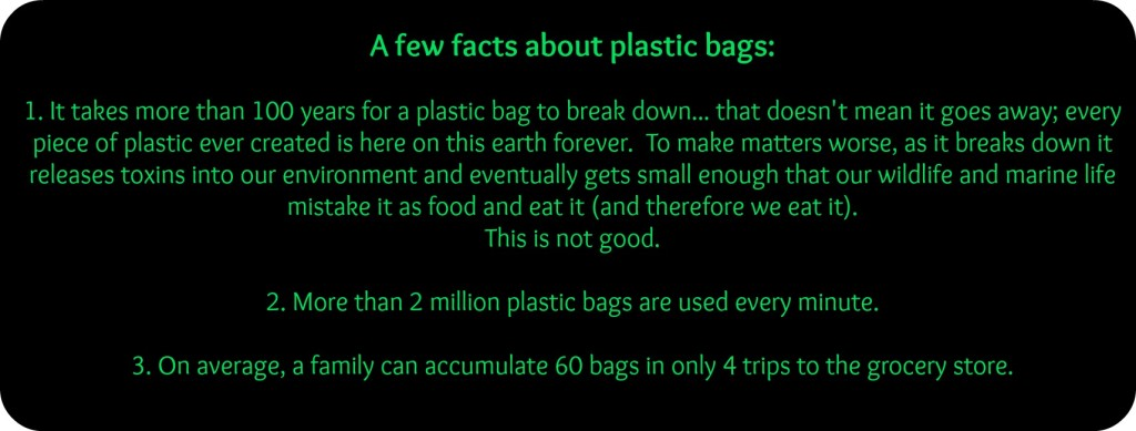 plastic bags 3