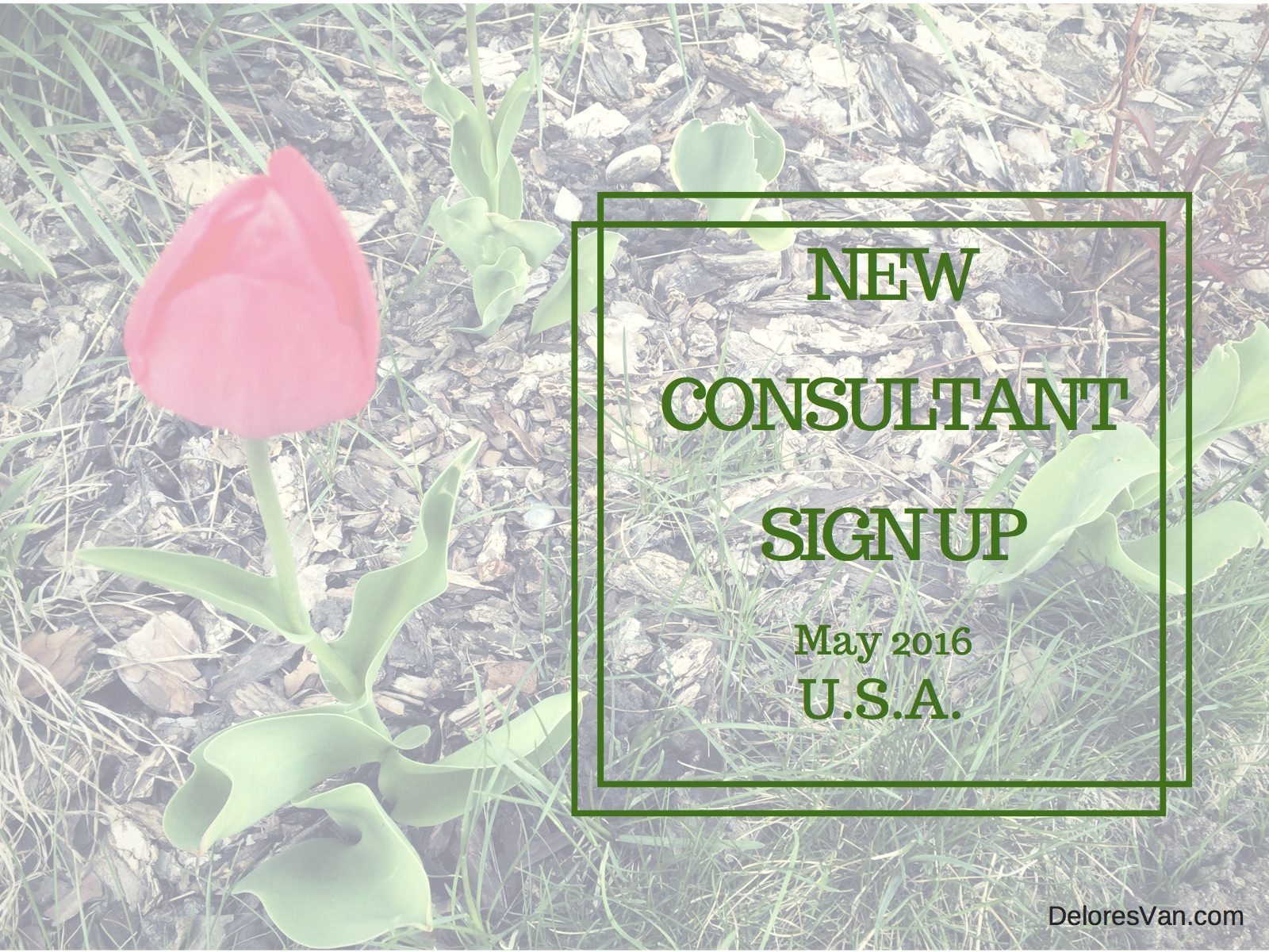 May New Consultant Sign Up – U.S.A.