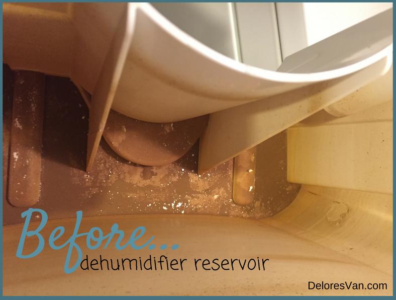 dehumidifier before