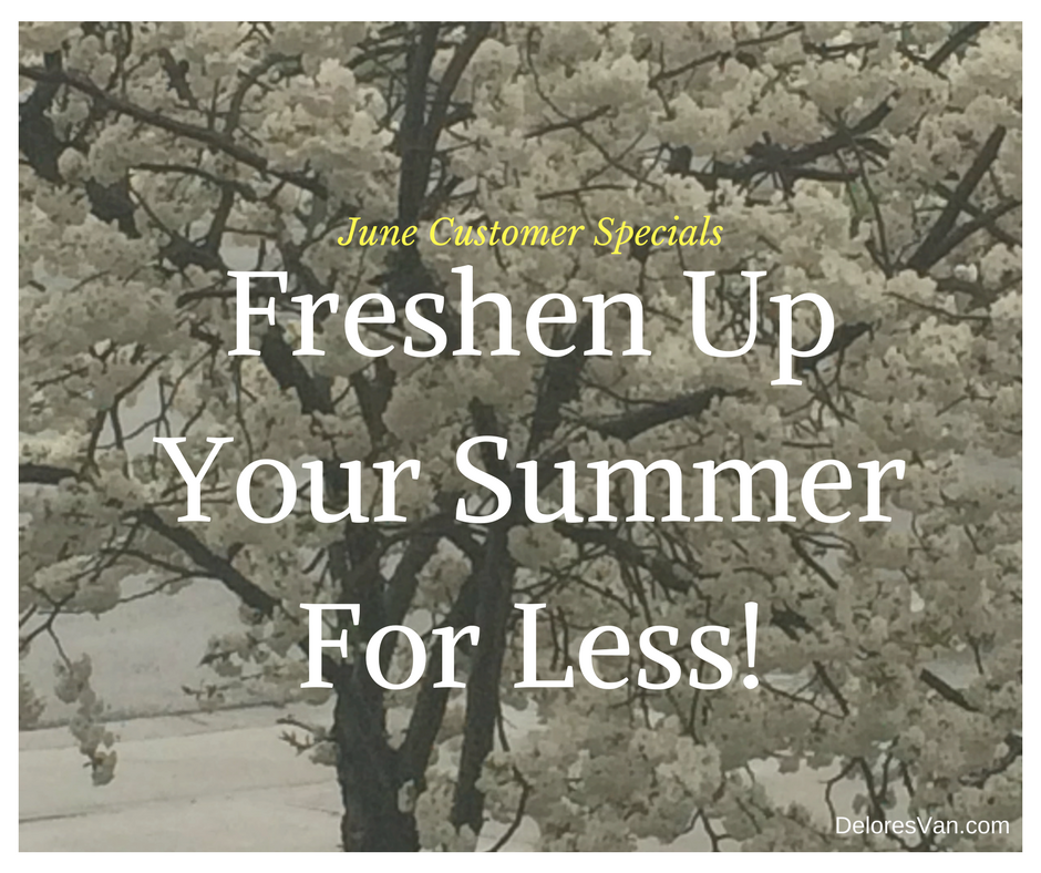 Freshen up your Summer for Less! June Norwex Customer Specials.