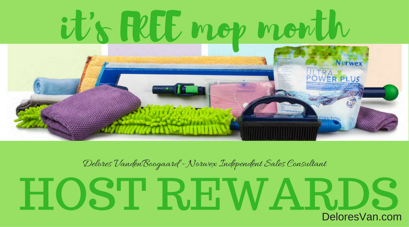 Is the Norwex Superior Mop System on your Wish List? July is Host MOP Month!!!