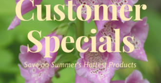 Norwex Customer Specials