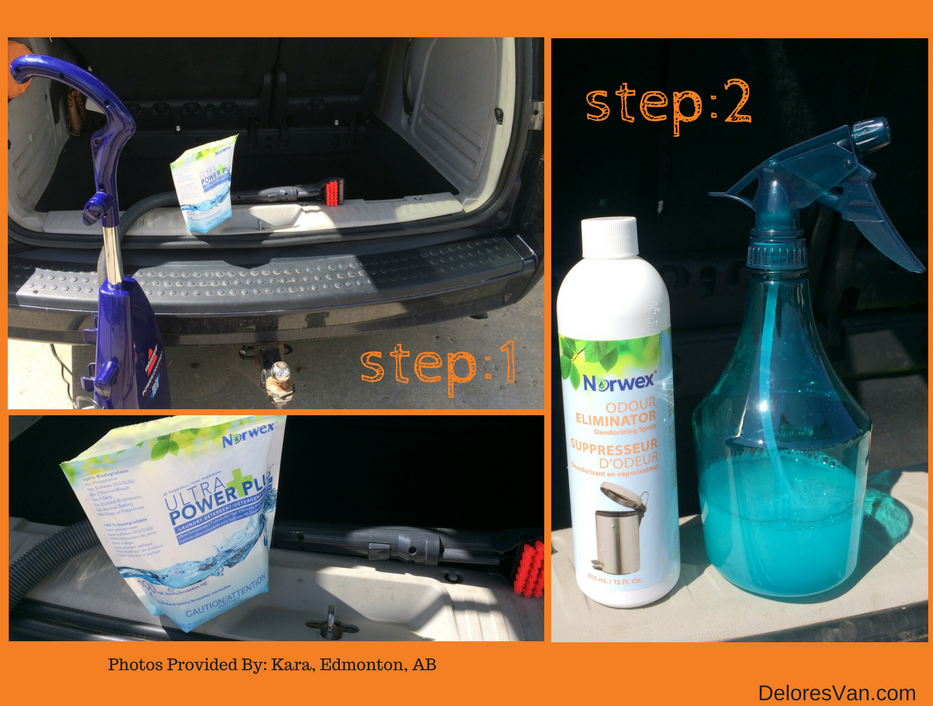 how to naturally clean smell from your vehicle