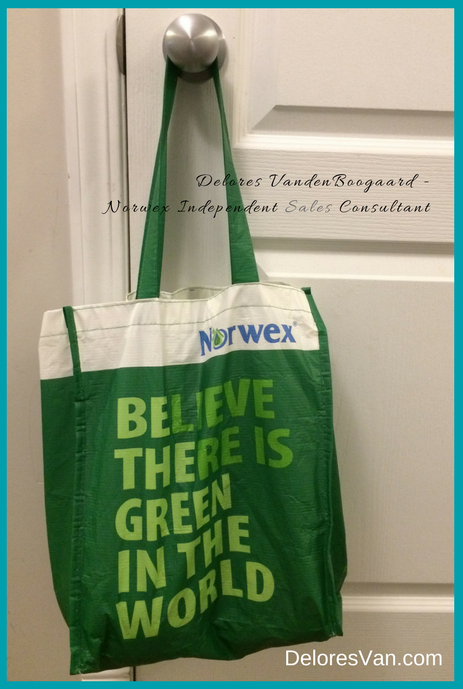 Norwex Reusable Grocery Bag DeloresVan.com