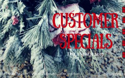 Festive Norwex Customer Specials for December