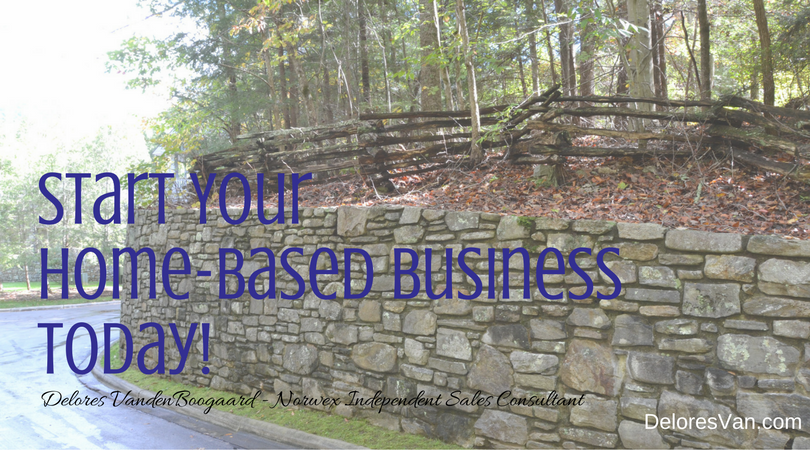 Start Your Home-Based Norwex Business!