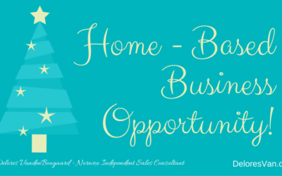 Norwex Independent Sales Consultant… Right Fit for You?