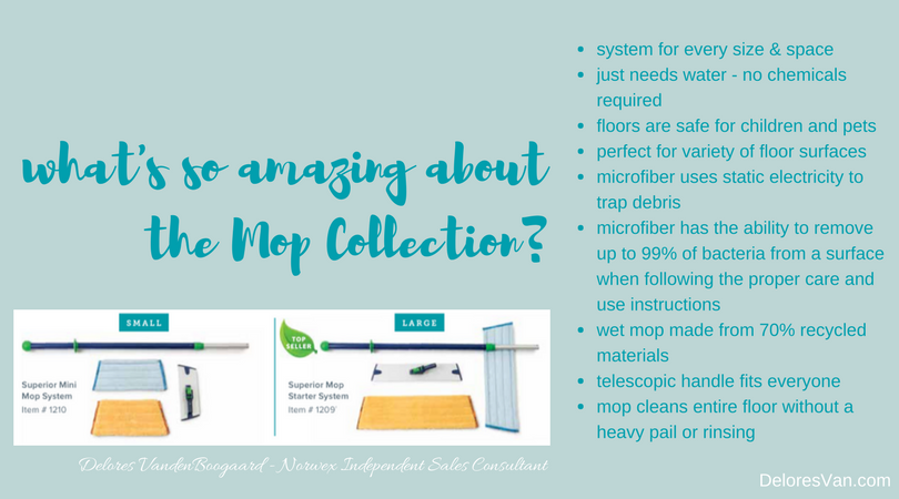 Norwex Mop System Info