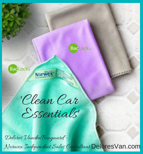 Norwex Car Summer Savings