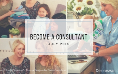 How to Become a Norwex Independent Sales Consultant!