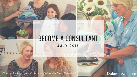 become a norwex consultant