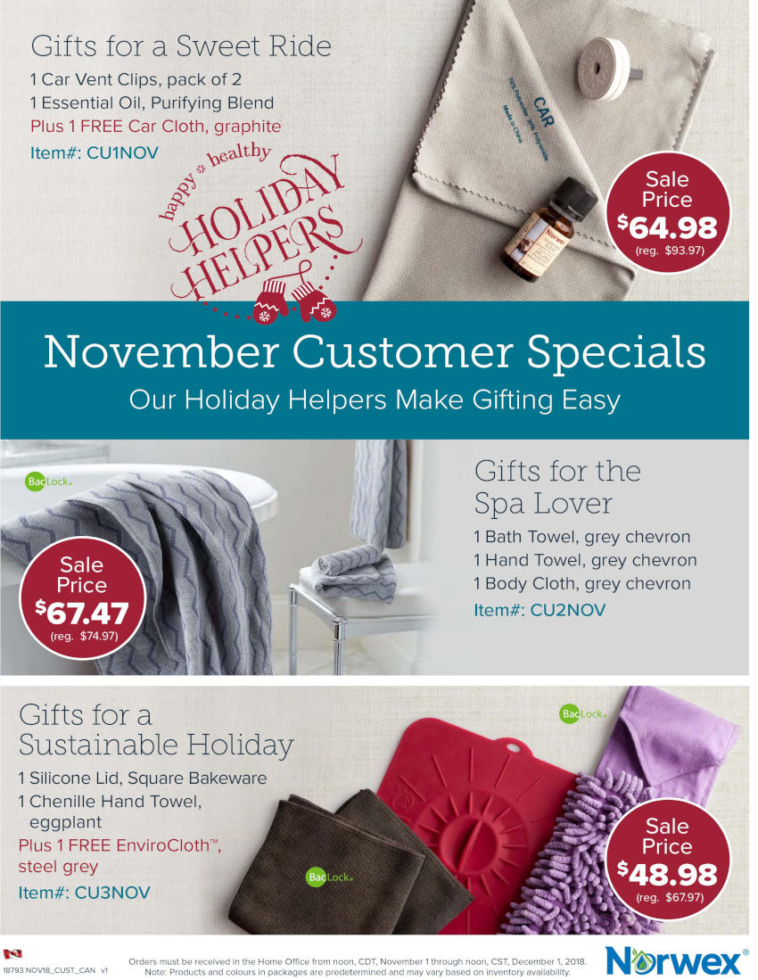 Norwex Christmas Sale