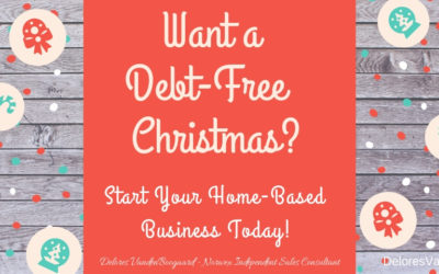 Want a Debt-Free Christmas??? … Norwex Opportunity