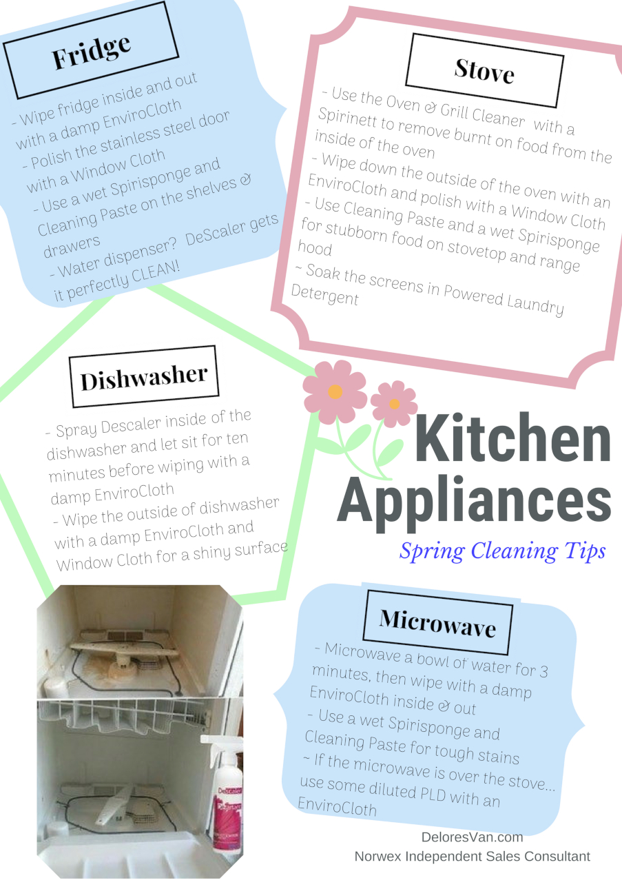 Spring Cleaning Appliances