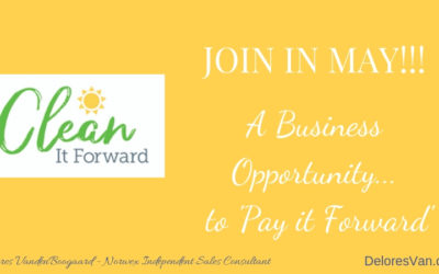 Clean it Forward with your New Norwex Business!