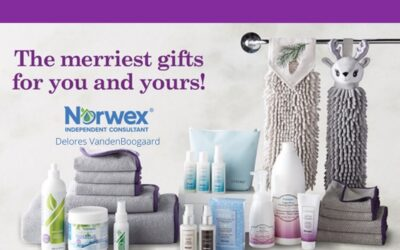 2020 Norwex Holiday Products
